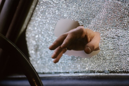 NC Legislation Will Allow Breaking Into Vehicles to Rescue Dogs from Hot Cars | The Dogington Post