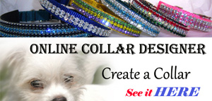 Online Pet Collar Designer