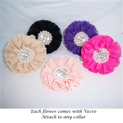 Detachable Dog Collar Flowers