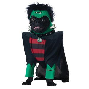 frankenpup-halloween-dog-costume-6403