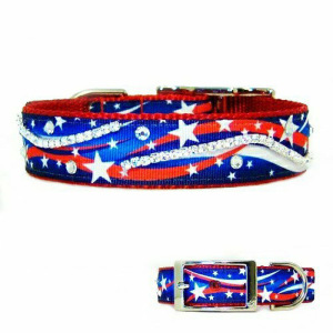 Patriotic dog collar